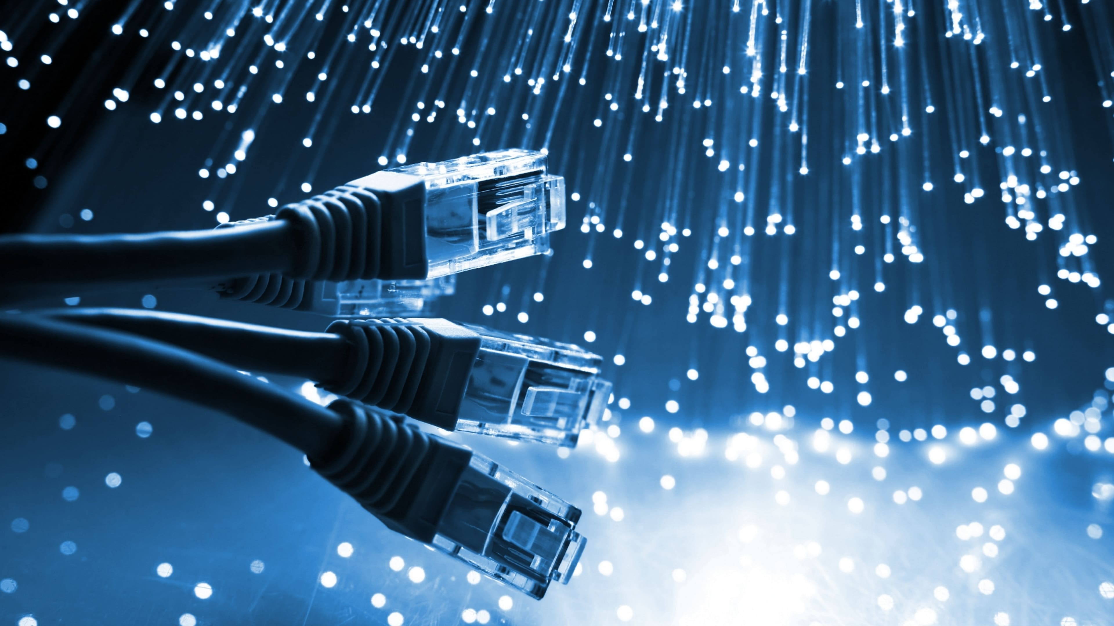 Royal Cabling Services: Data Cabling Perth