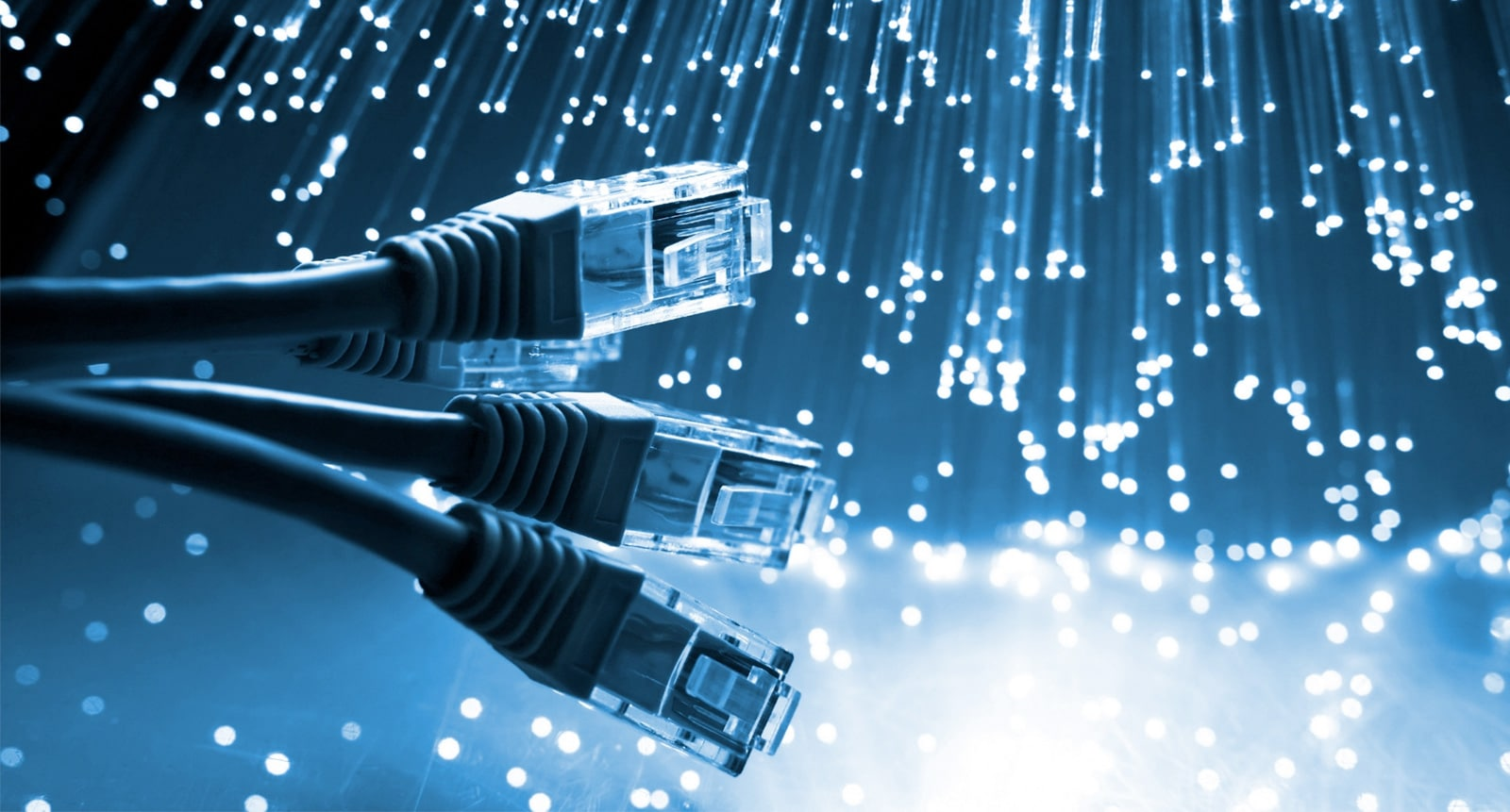 Royal Cabling Services: Data Cable Installer Perth